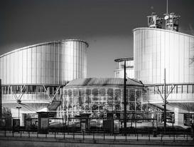 La Convention EDH et la réforme de la Cour de cassation : vers un ...